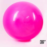 "Show™ 36"" Fuchsia (1 pcs.)"
